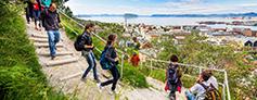 Fjeldvandring i Hammerfest med Hurtigruten - Ruby Rejser